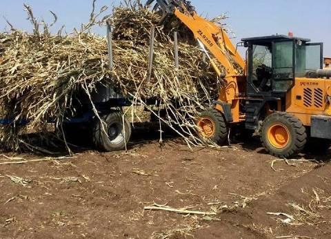 تحرير محاضر ضد المزارعين الذين يحرقون المخلفات الزراعية بسوهاج