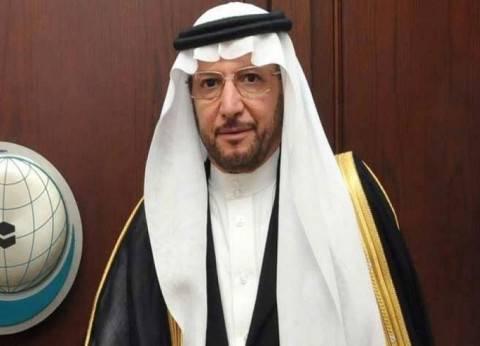 منظمة التعاون الإسلامي تدعو لدعم مشروع قرار حماية مدنيي فلسطين