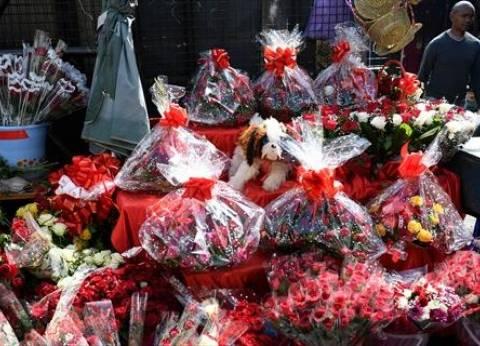 عيد الحب.. لماذا يحتفل المصريون به في 4 نوفمبر؟