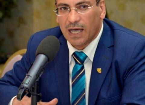 اتحاد المصريين بالخارج: مشاركة المصريين في الاستفتاء لفت أنظار العالم