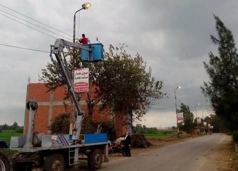 صيانة أعمدة الإنارة بمدخل قرية ميت حبيب في سمنود بالغربية