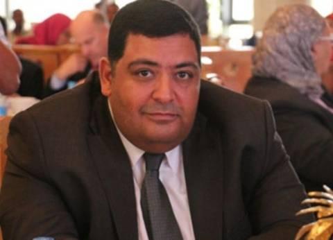 برلماني: اجتماع الرئيس بوزير الداخلية ضربة للغلاء والإرهاب