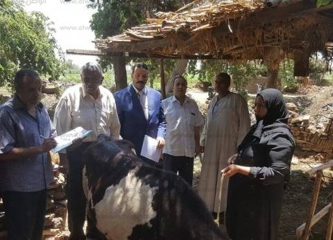 لجنة وزارية تبحث شكاوى مربيي الماشية النافقة في بني سويف