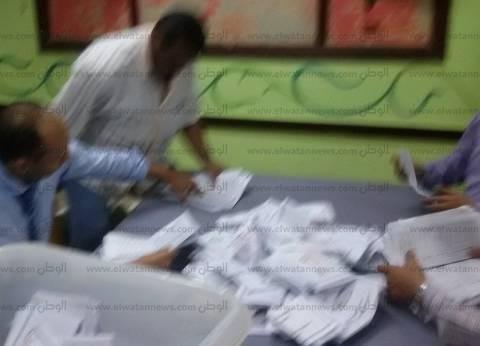 القضاء الإداري يقضي بإعادة الانتخابات في دائرة الرمل بالإسكندرية