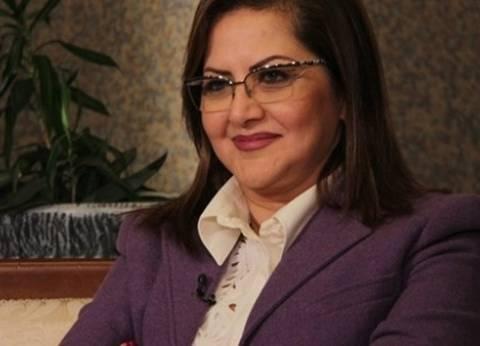 وزيرة التخطيط تبحث مع رئيس اتحاد الصناعات دعم المشروعات الصغيرة والمتوسطة