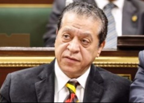 نائب: إعجاب الرئيس الصيني بسياسات السيسي فخر لكل المصريين