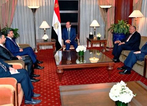 بالصور| تفاصيل لقاء السيسي مع وزير خارجية الإمارات