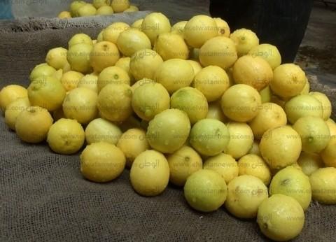 """""""متحدث الزراعة"""" ينفي وصول الليمون لـ 100 جنيه: """"ما شفتهوش خالص"""""""