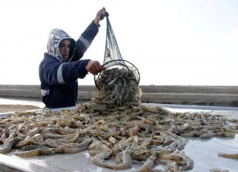 """""""مميش"""": مشروع الاستزراع السمكي يهدف لسد الفجوة الغذائية وتنمية القناة"""