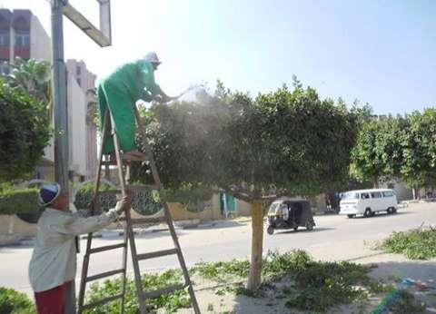 """""""نظافة الجيزة"""" تشن حملات لتجميل شارع """"اللبيني"""" بفيصل"""