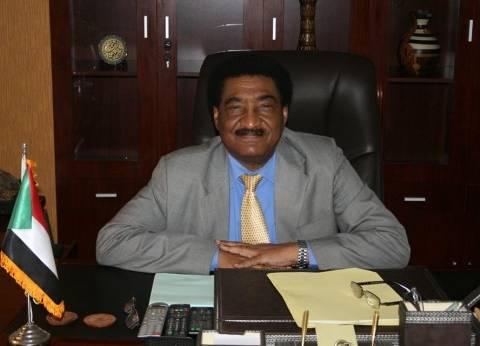 سفير السودان بالقاهرة: شرف لنا ولإفريقيا رئاسة مصر للاتحاد الإفريقي