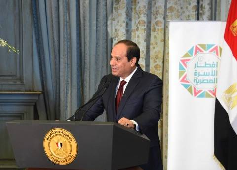 وزير الخارجية والجالية المصرية يستقبلون السيسي في نيويورك