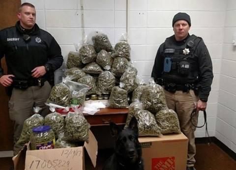 الأمن العام: ضبط 2113 قضية مخدرات في 12 يوما