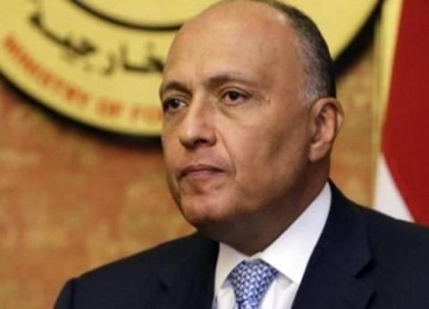 «شكري» يبحث مع وزير الخارجية الإماراتي حل الأزمة الليبية