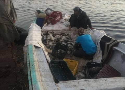 أمن أسوان يضبط 11 طن أسماك طازجة قبل تهريبها من بحيرة ناصر