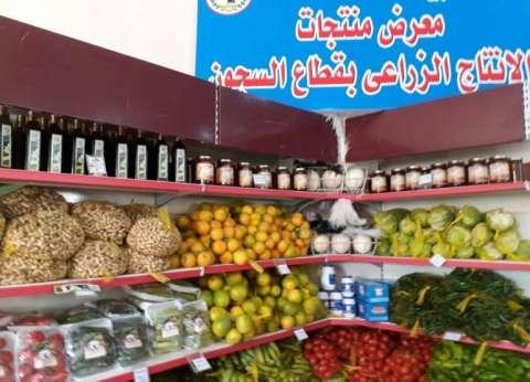 الإنتاج الزراعى: خضراوات وفواكه بلا كيماويات أو أسمدة.. والأسعار أقل 70% من الأسواق