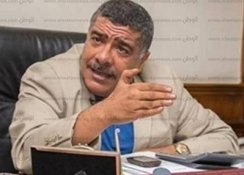 برلماني: مصر استعرضت قوة مشاريعها العملاقة في «بريكس»