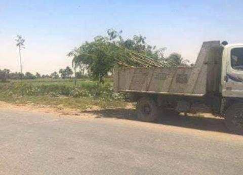 رفع الإزالات والإشغالات بالشوارع الرئيسية في المنيا