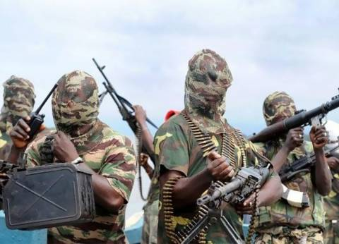 """""""بوكو حرام"""" تسيطر على مدينة في شمال شرق نيجيريا"""
