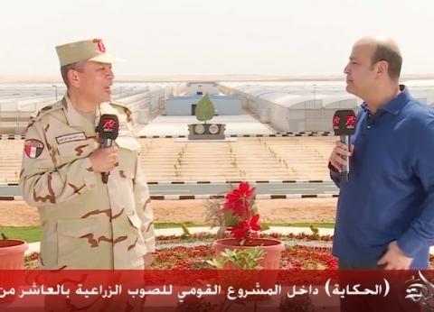 عبد الحي: ننتج أكثر من 150 طن خيار من المشروع القومي للصوب الزراعية