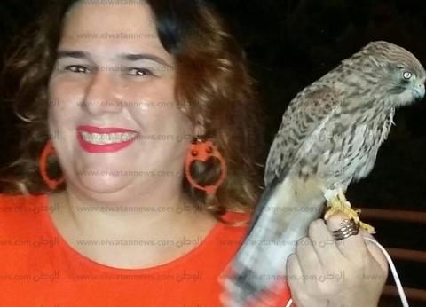 إنقاذ صقر عالق بشجرة بنادي سبورتنج في الإسكندرية