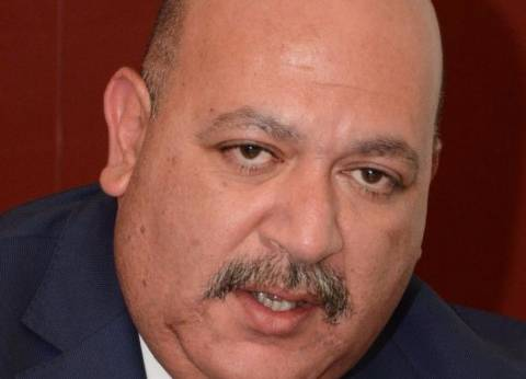 """وزير الصناعة يضم """"الدسوقي"""" و""""جنيدي"""" لمجلس الجمعية """"المصرية المغربية"""""""