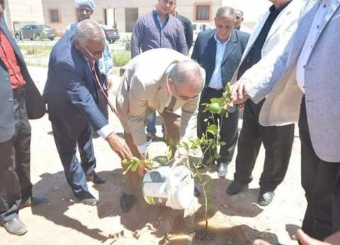 زراعة 2000 شجرة مثمرة بمدراس البحر الأحمر