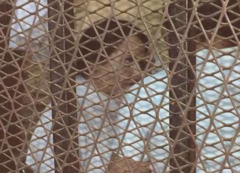 """محامي """"آية حجازي"""": موكلتي غادرت السجن أمس"""