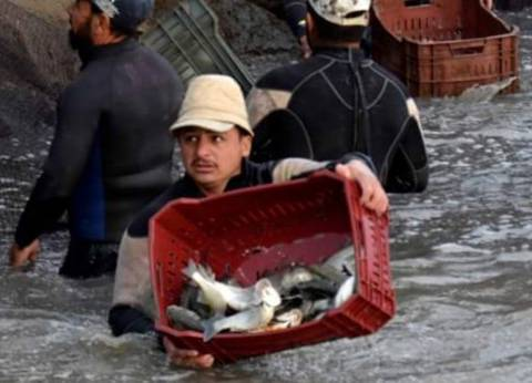 """""""علوم البحار"""" ينظم ورشة عمل عن """"تحديات إنتاج أعلاف الأسماك"""""""