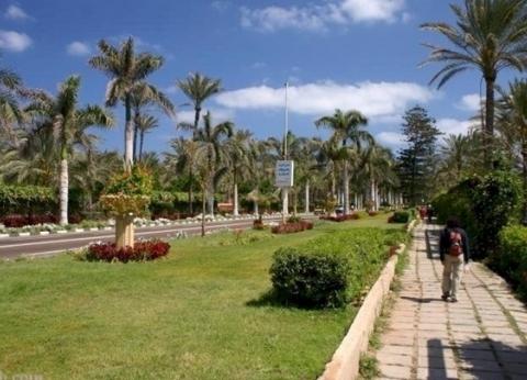 مشاركة شباب الجامعات في تطوير منطقة قصر المنتزه بالإسكندرية