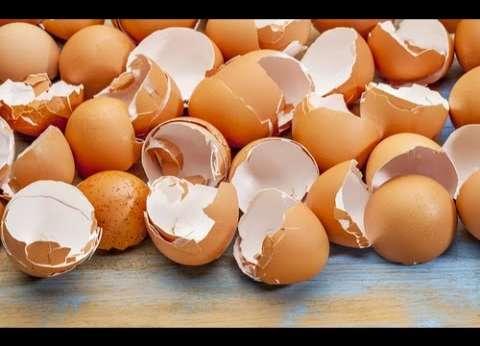 """""""الزراعة"""": لا يوجد بيض بلاستيك في الأسواق"""