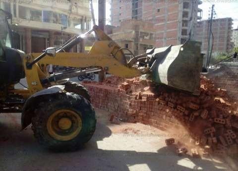 إزالة 127 حالة تعد على الأراضي الزراعية في كفر الشيخ
