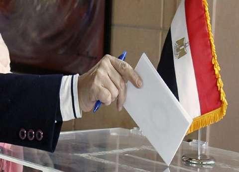 """""""صوتك مستقبلنا"""" هاشتاج لـ""""تنسيقية شباب الأحزاب"""" للحث على المشاركة بالاستفتاء"""