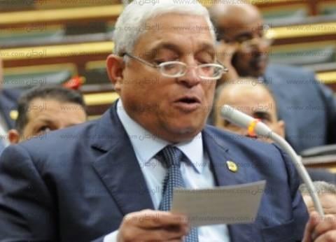 برلماني: مصر تحارب الإرهاب منفردة