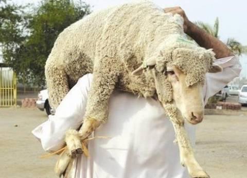 السعودية تعلن ذبح أكثر من 840 ألف رأس ماشية خلال موسم الحج