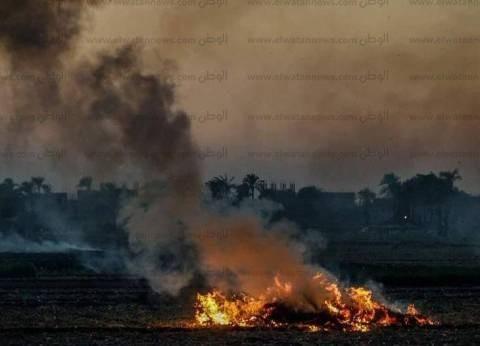 """""""مستقبل وطن"""" يطالب محافظ أسيوط بالحد من ظاهرة حرق مخلفات الذرة"""