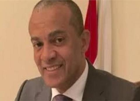 السفير المصري بموريتانيا: مشاركة فعالة من أعضاء الجالية في الاستفتاء