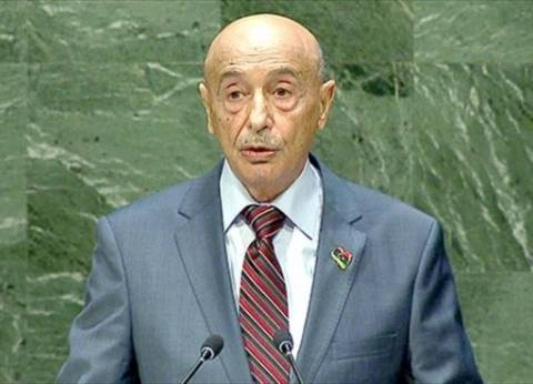 """رئيس """"النواب الليبي"""": نقف مع مصر في حربها ضد الإرهاب"""