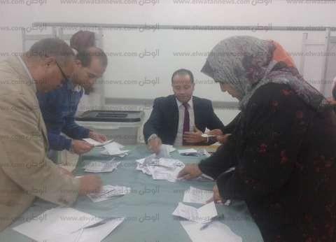 أكثر من 162 ألف أدلوا بأصواتهم في الإسماعيلية بنسبة 20%