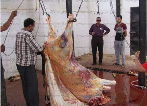"""""""بيطري جنوب سيناء"""": ذبح وسلخ الأضاحي مجانا في عيد الأضحى بجميع المدن"""