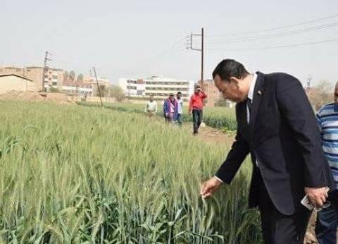 رئيس جامعة المنوفية يتفقد وحدة بحوث الإنتاج الزراعي والحيواني بطوخ