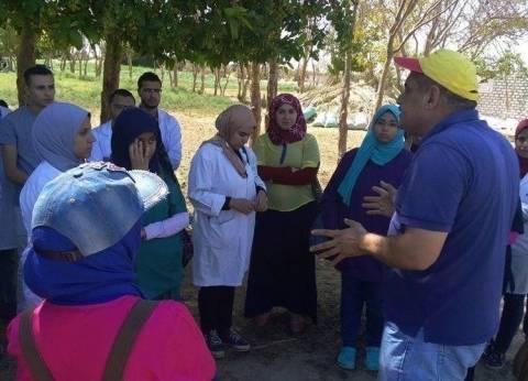 تحصين 2915 رأس ماشية ضد الحمى القلاعية في الوادي الجديد
