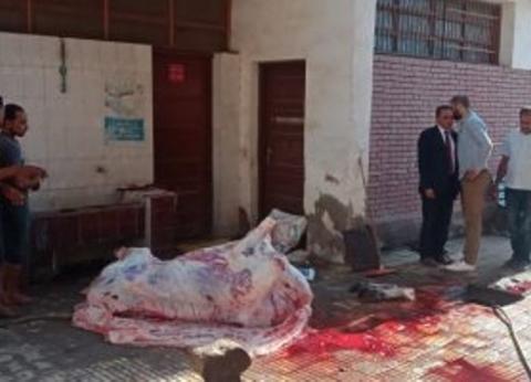 """استبعاد مدير مدرسة ببنها بسبب استغلال """"الحمامات"""" في تنضيف أضحية"""