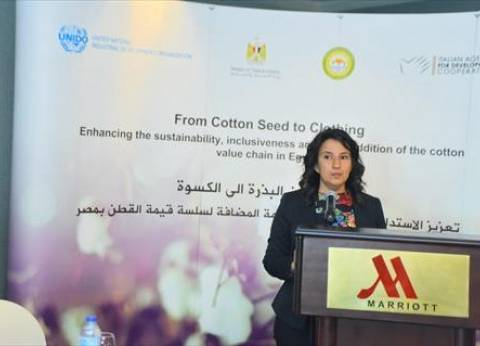 وزير التجارة: خطة شاملة لتعزيز تنافسية القطن المصري بالأسواق العالمية