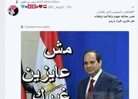 السيسي يلتقي وزير التربية والتعليم