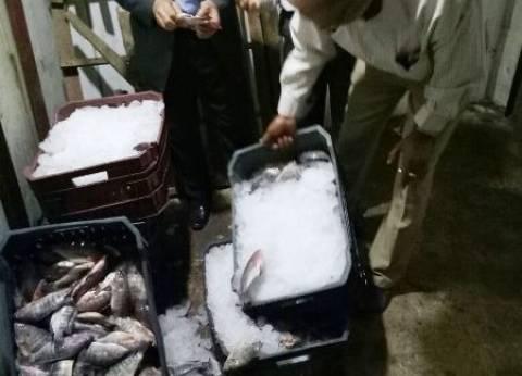 ضبط 350 كيلو أسماك غير صالحة للاستهلاك الآدمي في الإسكندرية