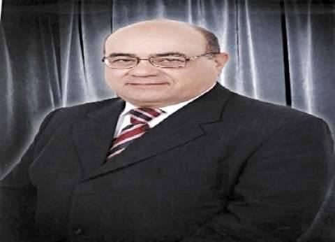 أستاذ أمراض الدواجن: «المربى» يخسر 4 جنيهات فى كل كيلو