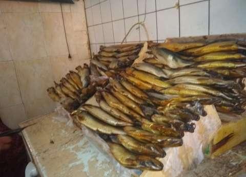 ضبط 11 طن دواجن وأسماك غير صالحة بشرق شبرا الخيمة