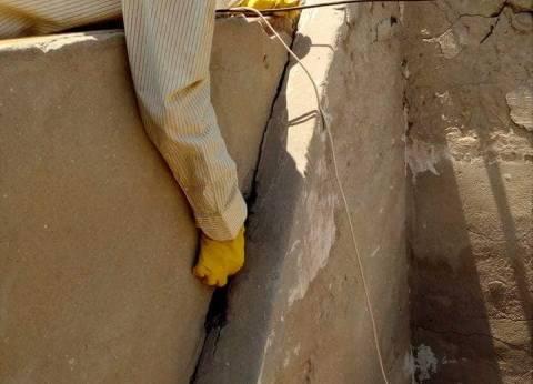 حملة بشوارع حي العرب في بورسعيد لمكافحة الثعابين