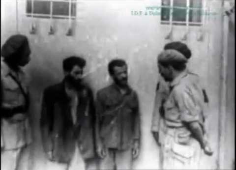 إسرائيل تنشر فيلما يوثق سيطرة الجيش المصري على quotنيتسانيمquot عام 1948